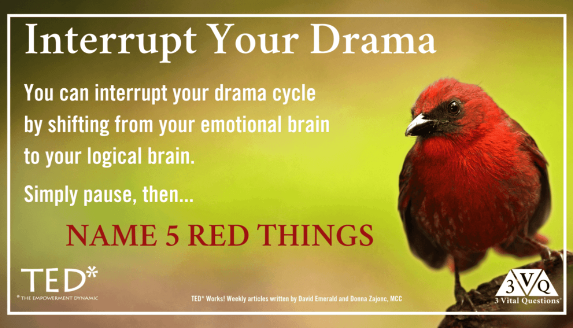 you can interrupt your drama cycle by shifting from your emotional brain to your logical brain. Simply pause, then name 5 red things.