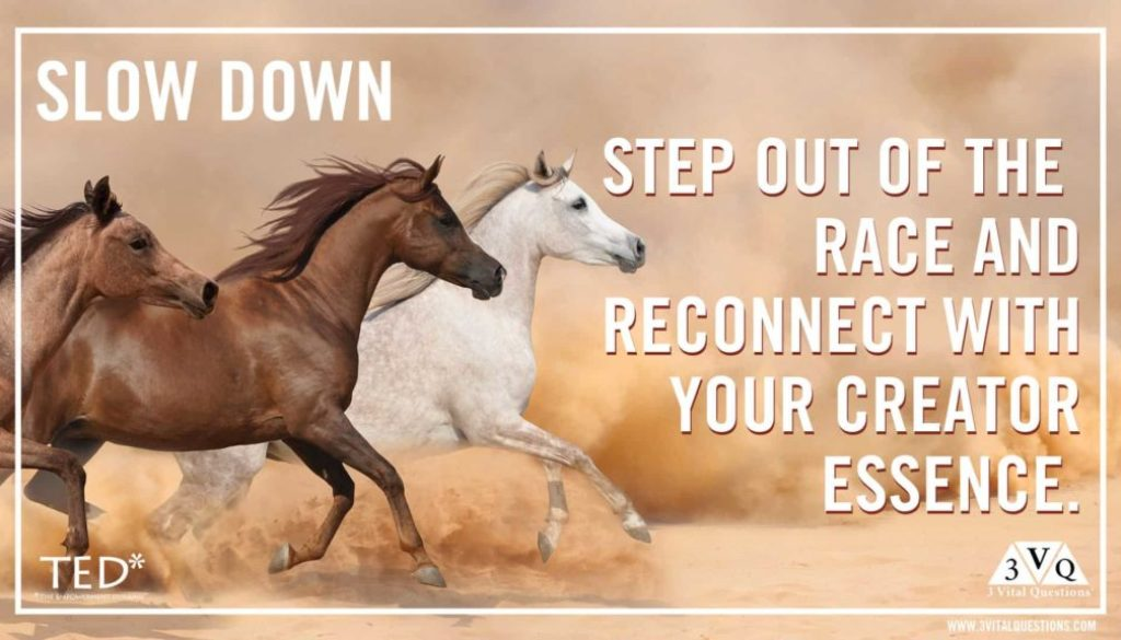 Slow down step out of the race and reconnect with your Creator essence.