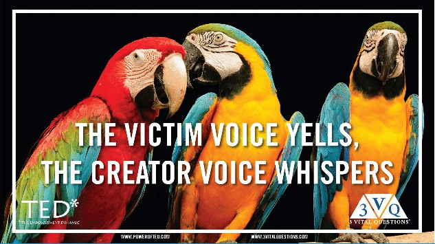 The Victim Voice Yells—The Creator Whispers
