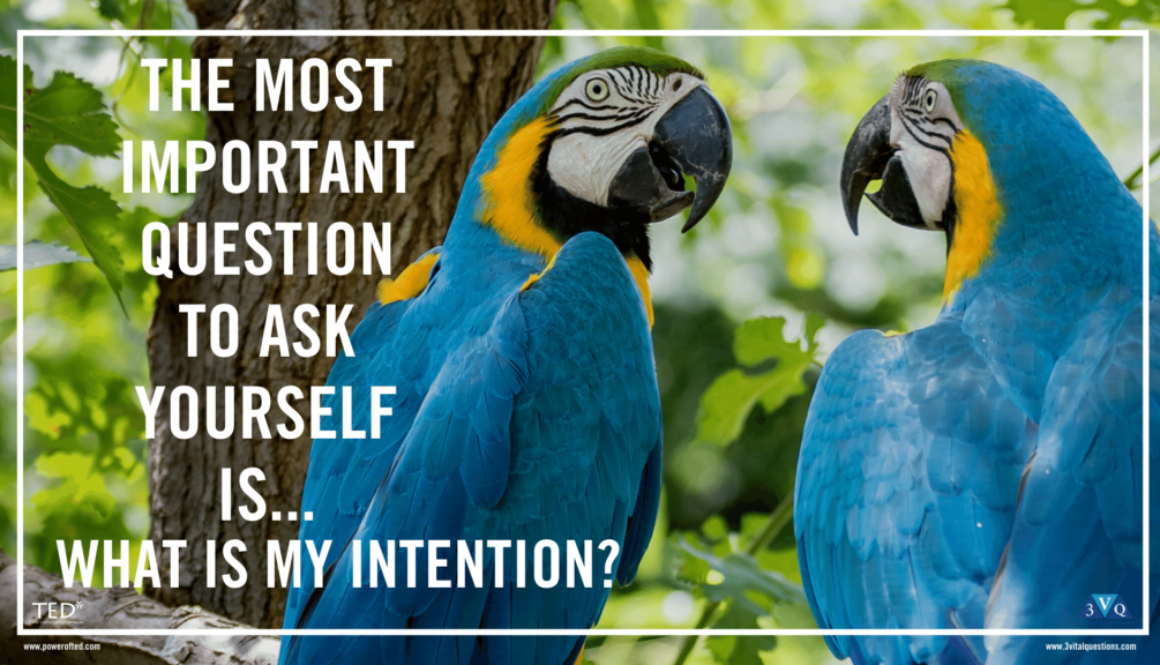the most important question to ask yourself is...what is my intention?