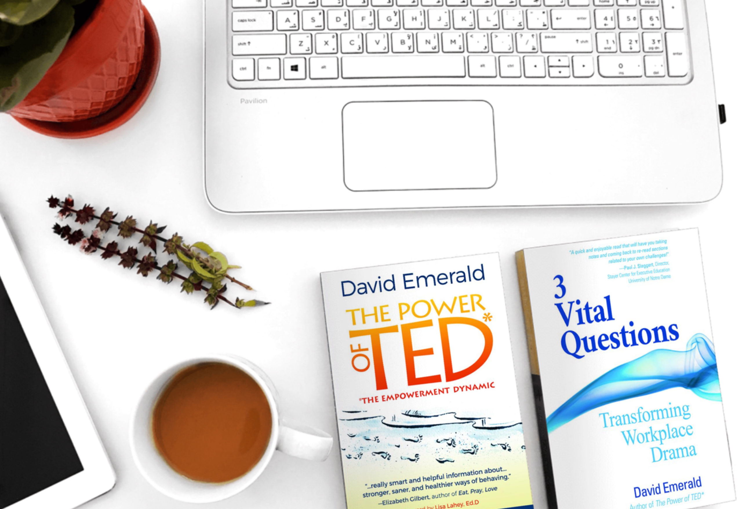 ted-3vq-books